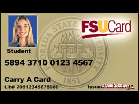 Ticket Fsu - Policy Youtube Student