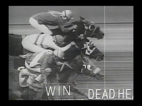 *Triple Dead Heat* - 1997 Hollywood Park Claiming Race