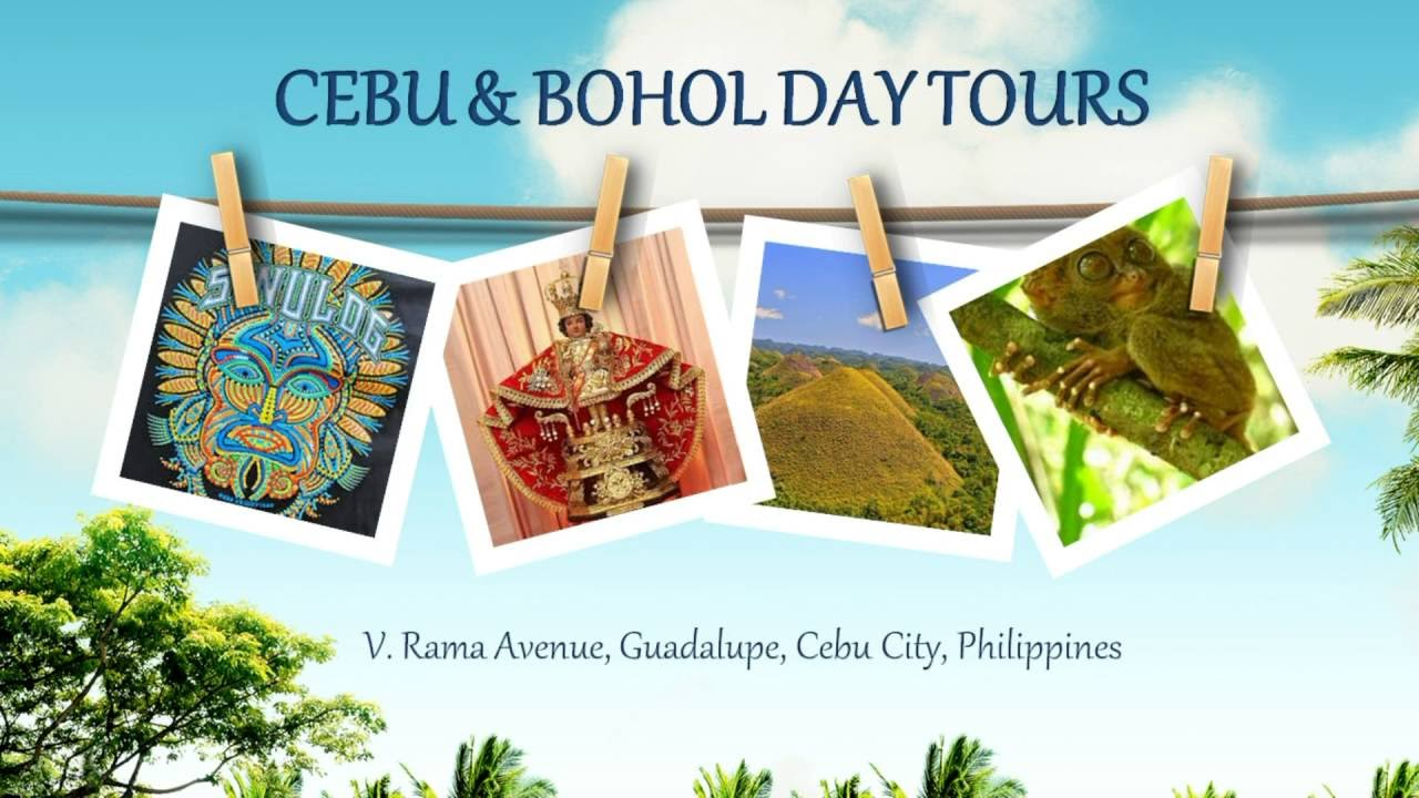 Mz Tour And Travel