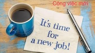 Chọn 1 tụ bài tarot : Khi nào bạn nhận được công việc mới và nó sẽ như thế nào?
