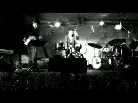 Peter Slavov - bass,  Perelik Eco Jazz Festival 2013