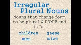 Possessive Nouns P2