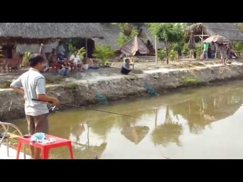 Hồ câu cá Vĩnh Lộc - TGCC.VN P1