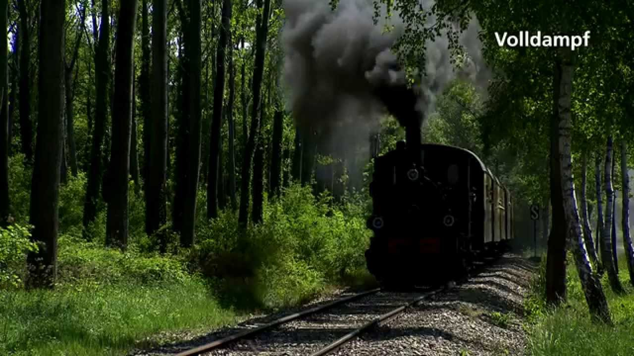 Volldampf: Chemin de fer touristique du Rhin - Unterwegs im Ried-Express