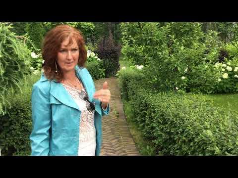 ❖ Запущенный сад ❖ - Ландшафтный дизайн / Сады от Ольги Болговой / Gardens by Olga Bolgova