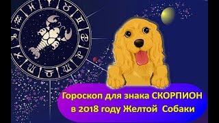 Гороскоп знака Зодиака СКОРПИОН на  2018 год Желтой Собаки