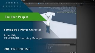 Setting up a Player Character in CRYENGINE [FBX]
