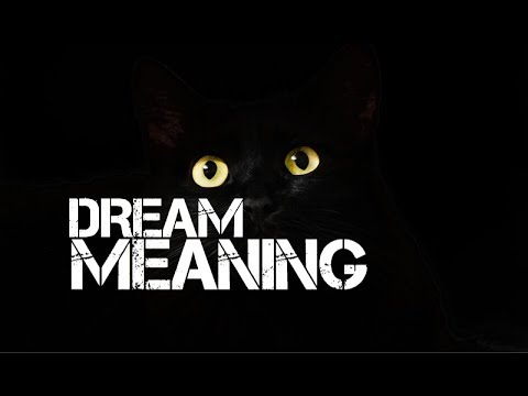 DREAM MEANING CAT ATTACK