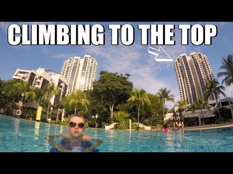 I climbed to the top of that! Singapore vlog