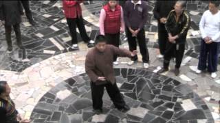 James Fu Qing Quan: Repulse Monkey demonstration & instruction Tai Chi Workshop Wudong 2012
