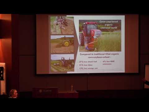 Opportunities and Obstacles with Organic No-Till Soybean thumbnail