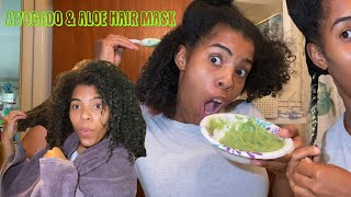 DIY Avocado and Aloe Vera Gel deep conditioning mask for hair growth did it work for me