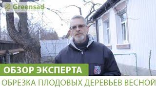 видео Обрезка садовых деревьев.