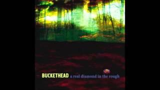 buckethead a real diamond in the rough full album