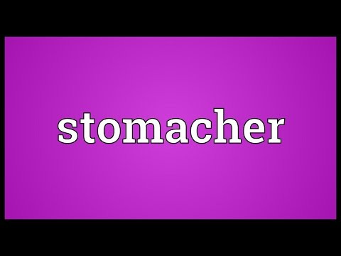 Header of stomacher