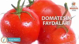 Video Domatesin Faydaları download MP3, 3GP, MP4, WEBM, AVI, FLV Desember 2017