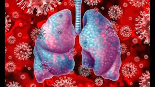 Improving Lungs & Immunity - The Acupuncture perspective (for Corona & other)