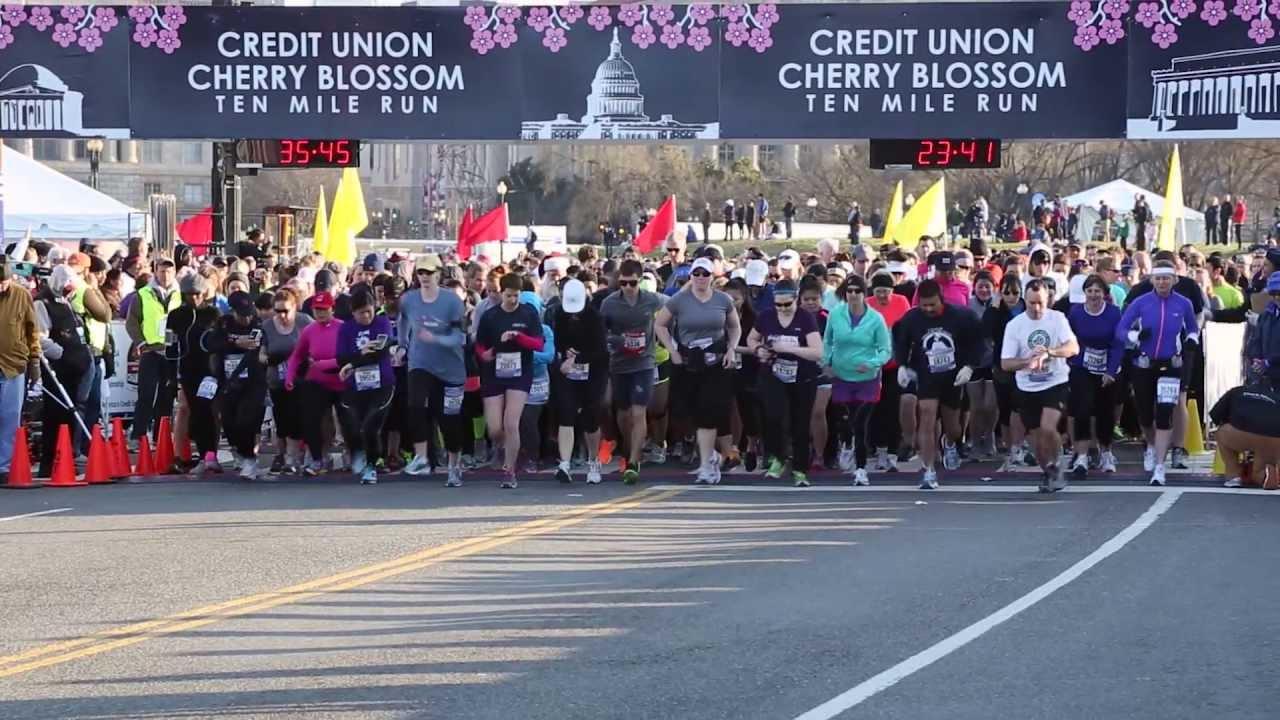 2013 Cherry Blossom 10 Miler - Running Event in Washington ...