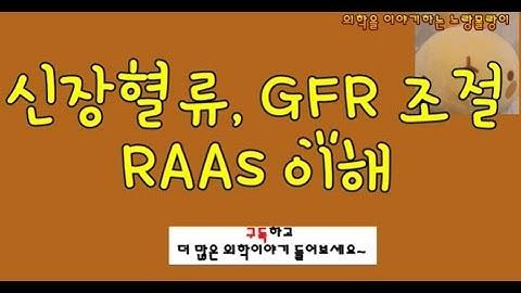 신장 혈류 조절(Renal autoregulation): GFR 조절과 레닌-안지오텐신-알도스테론 시스템(RAAS)