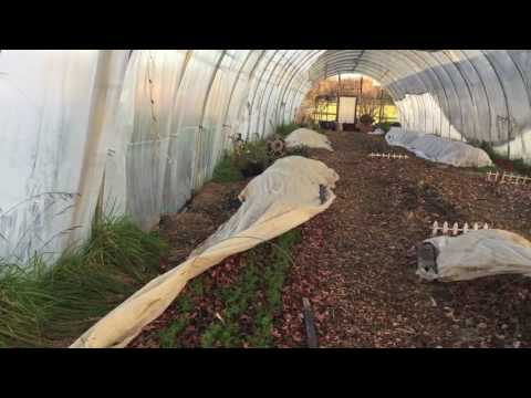 Urban Farming Documentary