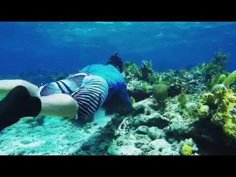 July Fourth Freedive