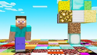 Minecraft BUT EVERY Block IS RANDOM!