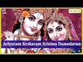 Download Achyutam Keshavam Krishna Damodaram - Krishna Bhagwan Ke Bhajan   भजन हिंदी   Bhajan Songs MP3 song and Music Video