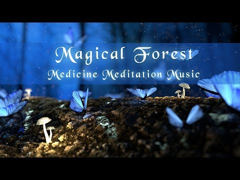 Medicine Meditation Song (Magic Forest) Psychedelic Relaxation Music