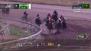 Vidéo de la course PMU PREMIO SOBRESALIENTE (INTERNET)