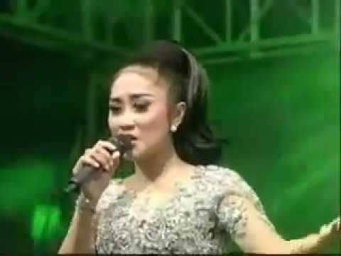 Ilalang   Anisa Rahma    New Pallapa Kramatan Tasikagung Rembang 2016