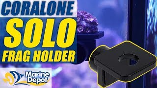 Oceanbox Designs CoralOne Solo Frag Holder: What YOU Need to Know
