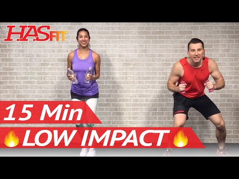 15 Min Low Impact Aerobics Quiet Cardio Workout for Beginners with No Jumping Easy Exercises