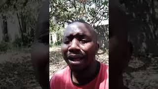 All clip of zambian watchdog | BHCLIP COM