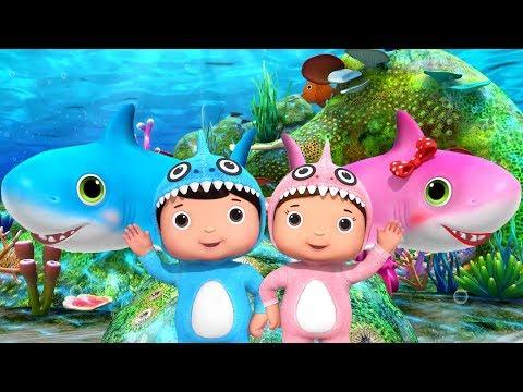 Baby Shark | El Baile de Bebé Tiburón | Canciones Infantiles | Little Baby Bum en Español