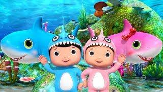 Baby Shark   El Baile de Bebé Tiburón   Canciones Infantiles   Little Baby Bum en Español