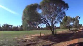 Dryandra Woodland & surrounding national park- Australia