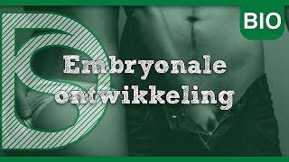 Biologie - Embryonale ontwikkeling (Voortplanting)