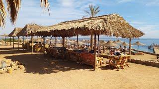 Обзор Пляжа Palma Beach отеля Tivoli Hotel Aqua Park 4 Египет Шарм эль Шейх ЗИМА 1 02 2020