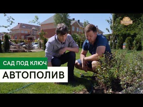 Вопрос: Какие нужно знать тонкости полива газона?