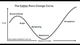 MGTOW Master Series #23 Stages of Grief Kubler/Ross Model Stage 4 Bargaining