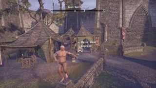 Elder Scrolls Online Tamriel Unlimited (Crazy Man Dance Naked)