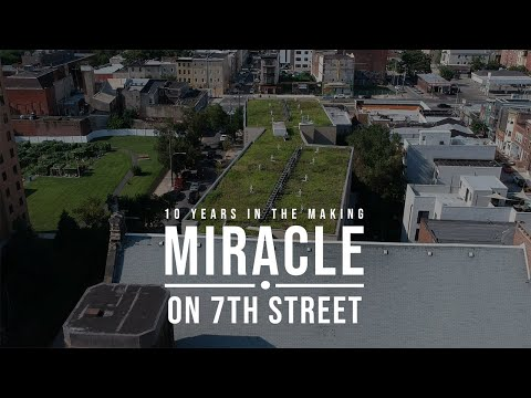 2019 AIA Film Challenge: Miracle on 7th Street