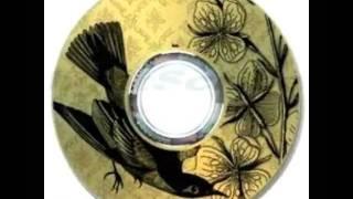 como usar lightScribe paso a paso para etiquetar CD's by MMMarloNNN