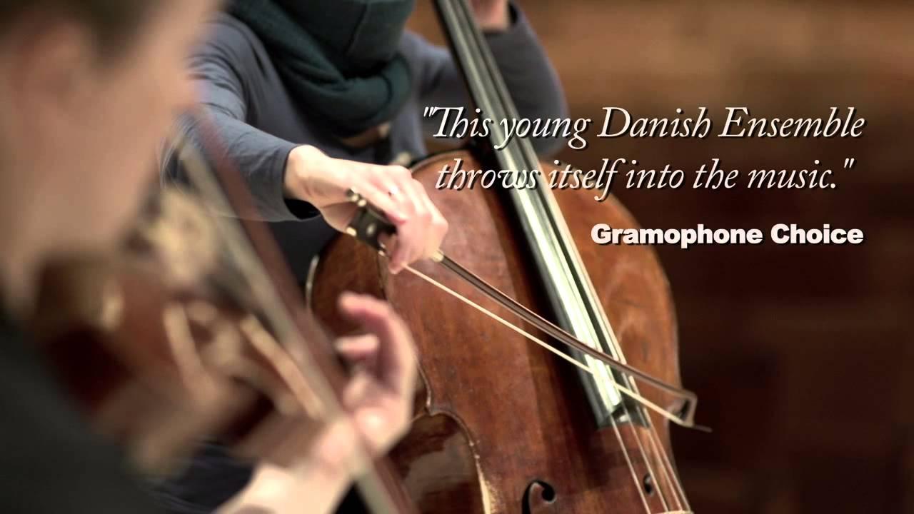 Nightingale String Quartet | Pro Artist LTAM
