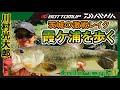 『【釣りビジョン follow my F 18 特別編集版】川村光大郎 茨城の激戦レイク・霞ヶ浦を歩く』