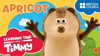 Meet Apricot | Learning Time with Timmy | Cartoons for Kids