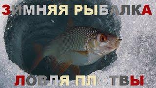 видео Ловля крупного окуня зимой - Рыбалка, охота, отдых и туризм.