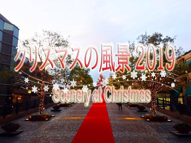クリスマスの風景2019 Scenery at Christmas