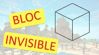 BLOC INVISIBLE MINECRAFT CONSOLE ( ps vita , ps3 , ps4 , xbox , wii u )