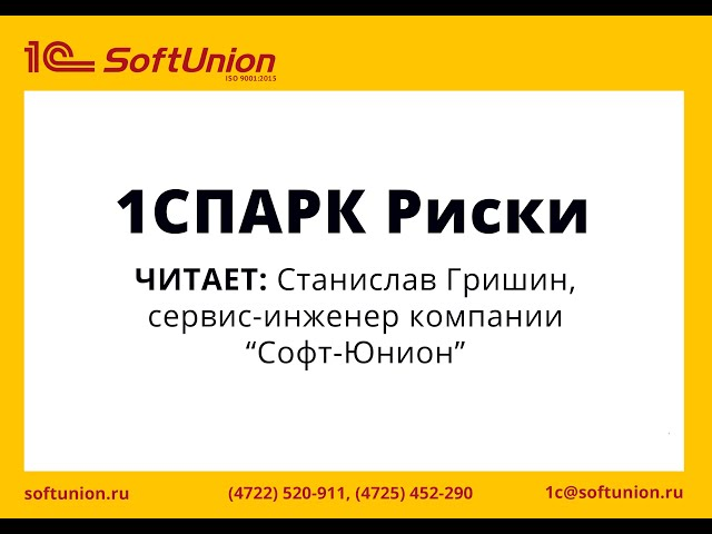 Обзор функционала сервиса 1СПАРК Риски